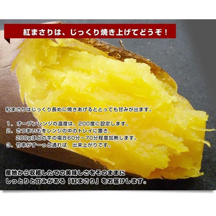 茨城県より産地直送 JAなめがた さつまいも「紅まさり(べにまさり)」 Sサイズ 約5キロ(25本から30本前後) 送料無料 さつま芋 サツマイモ 薩摩芋|sanchokudayori|07