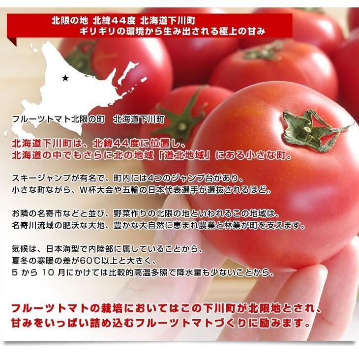 北海道より産地直送 下川町のスーパーフルーツトマト <北の極> 秀品 約800g LからSサイズ(8玉から15玉)送料無料 とまと|sanchokudayori|03