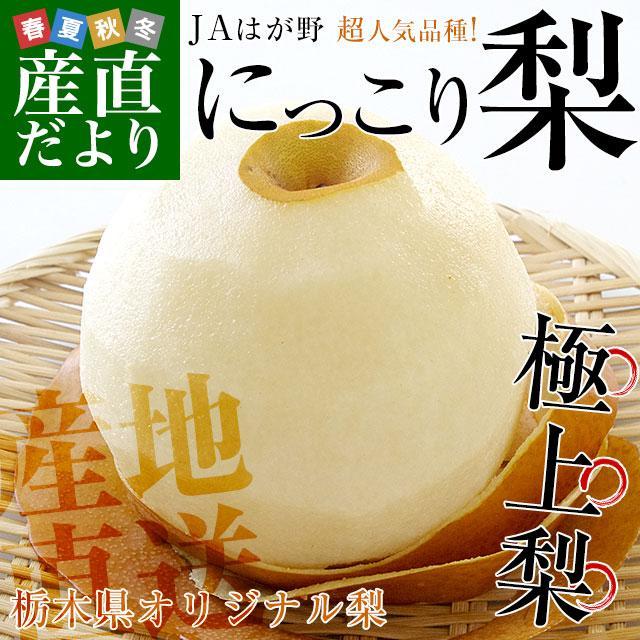 栃木県より産地直送 JAはが野 にっこり梨 大玉 5キロ (4玉から7玉)送料無料 優品以上 なし 梨 ナシ sanchokudayori