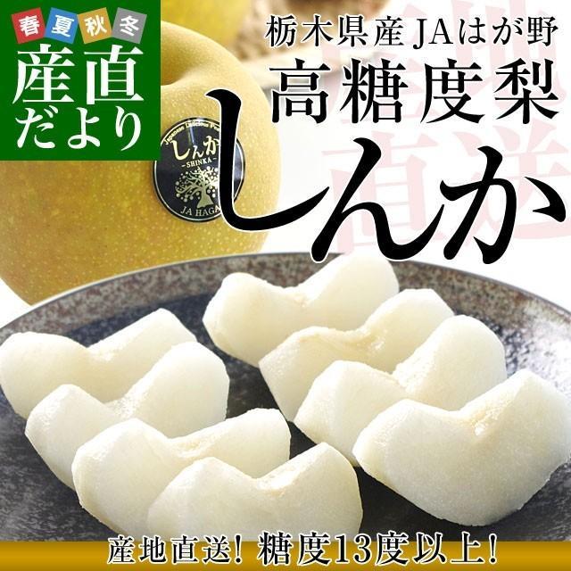 送料無料 栃木県より産地直送 JAはが野 高糖度梨「しんか」糖度13度以上 幸水梨または、豊水梨 約2.2キロ (6玉入) なし ナシ|sanchokudayori