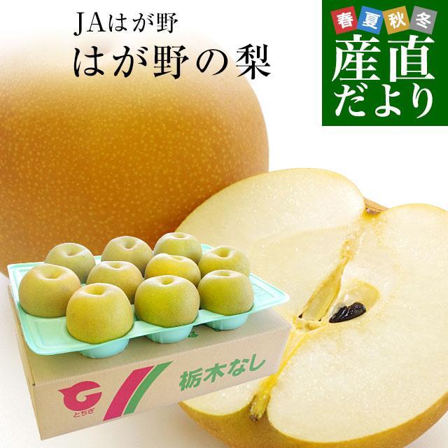 送料無料 栃木県より産地直送 JAはが野の梨 (大玉限定) 優品以上 約5キロ (8玉から10玉) なし ナシ sanchokudayori