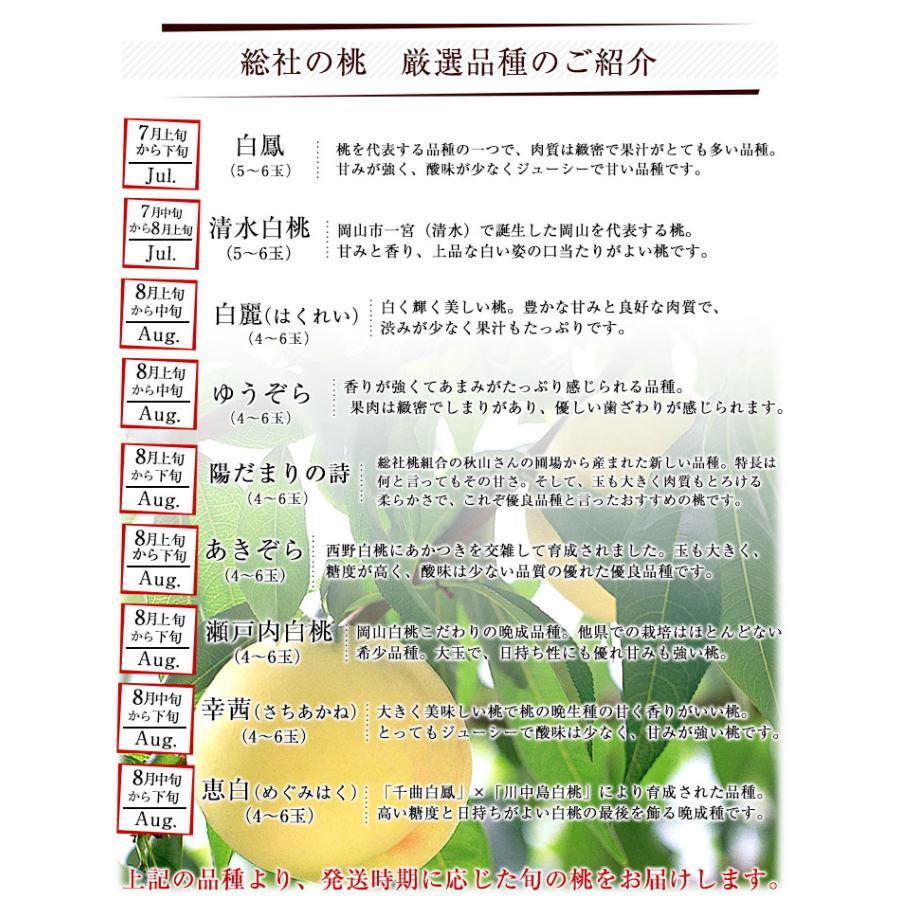 岡山県から産地直送 JA晴れの国岡山 総社もも生産部会 総社(そうじゃ)の桃 青秀以上 1.5キロ前後 (4玉から6玉) 総社の桃 モモ 送料無料 sanchokudayori 08