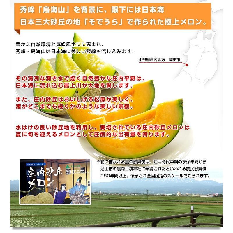 山形県より産地直送 JAそでうら 庄内砂丘メロン 「甘えん坊(青肉)」 3L 大玉2玉(1.5キロ×2玉)送料無料 メロン めろん|sanchokudayori|04