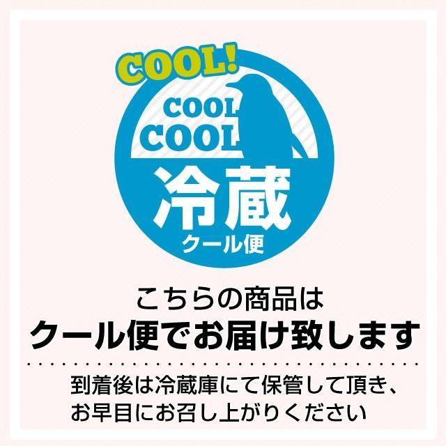 栃木県より産地直送 JAおやま スカイベリー 約300g×2P(6から12粒×2P) 送料無料 いちご イチゴ 苺  ※クール便発送|sanchokudayori|10
