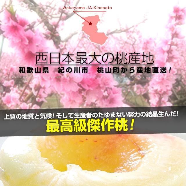 和歌山県より産地直送 JA紀の里 あら川の桃 赤秀品 1.8キロ (6玉から8玉) 送料無料 桃 もも あらかわ|sanchokudayori|03