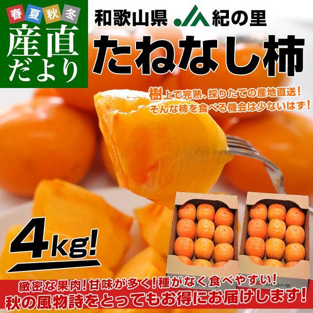 和歌山県より産地直送 JA紀の里 たねなし柿 合計4キロ 2キロ×2箱 (10玉から12玉入り×2箱) カキ かき 柿 送料無料 sanchokudayori