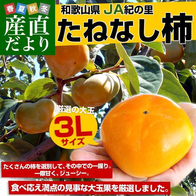 和歌山県より産地直送 JA紀の里 たねなし柿 大玉3Lサイズ 3.75キロ(14玉入) カキ かき 柿 送料無料|sanchokudayori