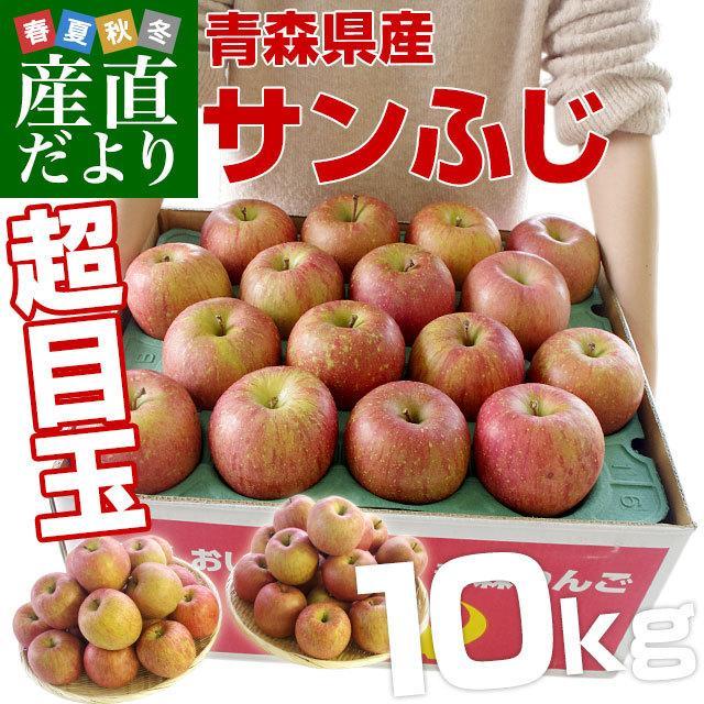 年末特別価格 青森県より産地直送 青森県産のサンふじりんご 約10キロ(28から36玉前後) sanchokudayori
