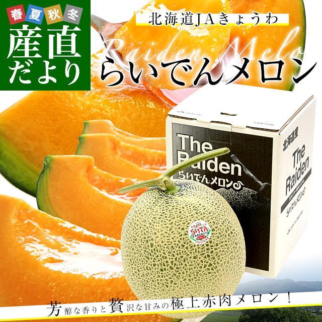 北海道産 JAきょうわ らいでんメロン 赤肉 1玉 1.5キロ前後 めろん 夏ギフト お中元ギフト|sanchokudayori