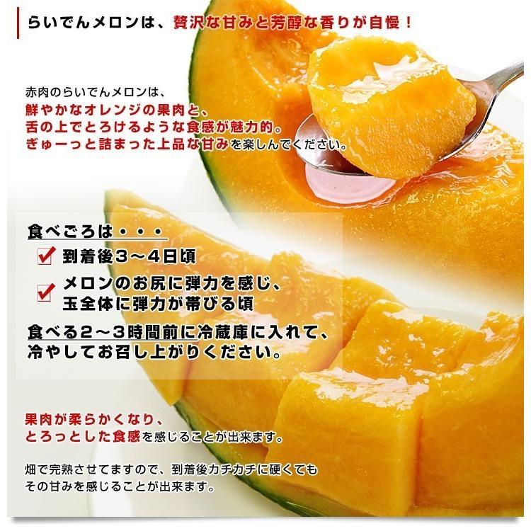 北海道産 JAきょうわ らいでんメロン 赤肉 1玉 1.5キロ前後 めろん 夏ギフト お中元ギフト|sanchokudayori|04