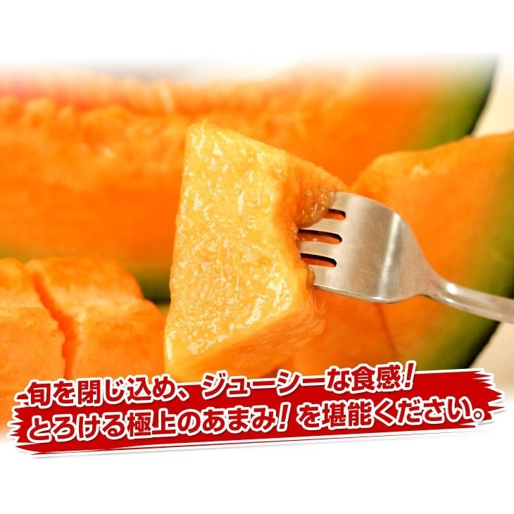 北海道産 JAきょうわ らいでんメロン 赤肉 2玉 1.5キロ前後×2玉 めろん 夏ギフト お中元ギフト sanchokudayori 03