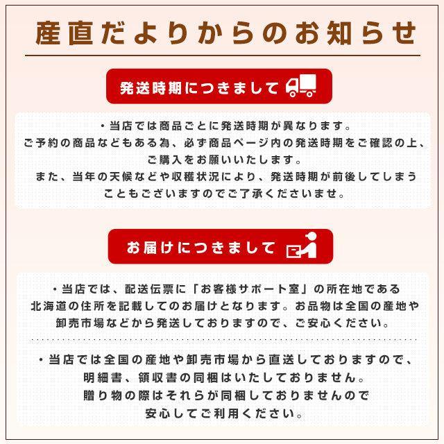 北海道産 JAきょうわ らいでんメロン 赤肉 2玉 1.5キロ前後×2玉 めろん 夏ギフト お中元ギフト sanchokudayori 09