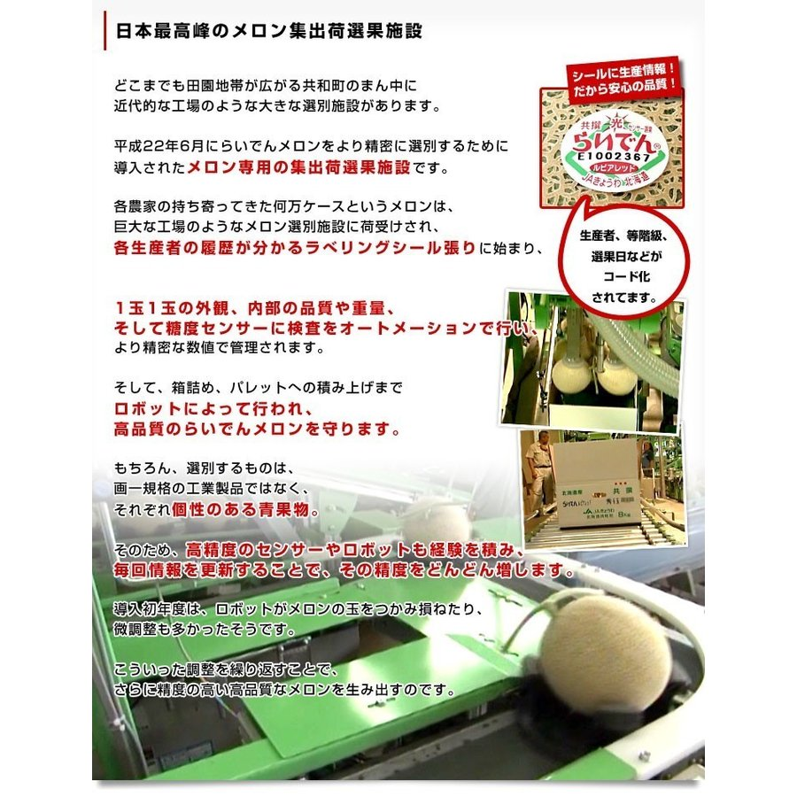 北海道産 JAきょうわ らいでんメロン 赤肉 2玉 1.5キロ前後×2玉 めろん 夏ギフト お中元ギフト sanchokudayori 06