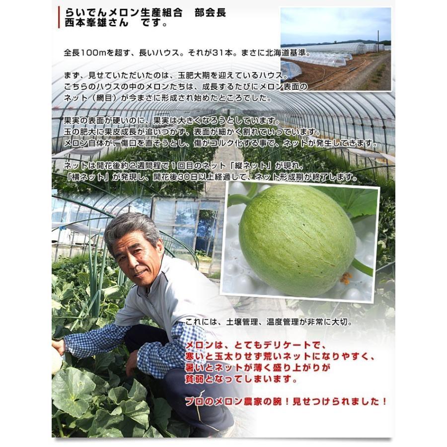 北海道産 JAきょうわ らいでんメロン 赤肉 2玉 1.5キロ前後×2玉 めろん 夏ギフト お中元ギフト sanchokudayori 07