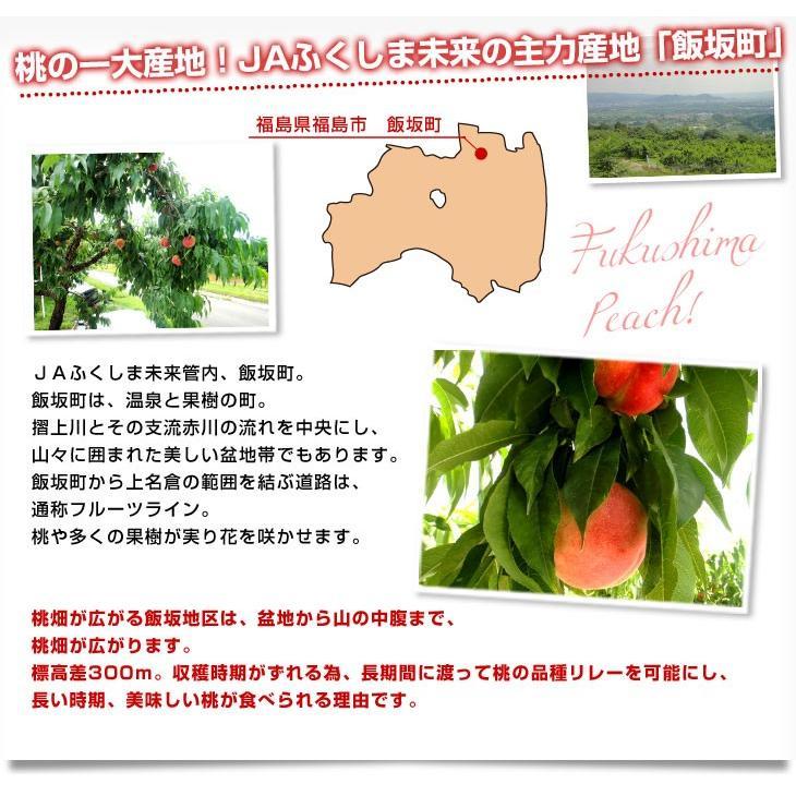 福島県より産地直送 JAふくしま未来 秀品桃 ミスピーチ 約2キロ (5玉から9玉) 送料無料 もも 桃 sanchokudayori 05