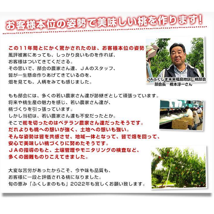 福島県より産地直送 JAふくしま未来 秀品桃 ミスピーチ 約2キロ (5玉から9玉) 送料無料 もも 桃 sanchokudayori 06