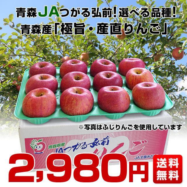 青森県より産地直送 JAつがる弘前 極旨・産直りんご 選べる品種 約3キロ(9玉から13玉) 林檎  送料無料|sanchokudayori|02