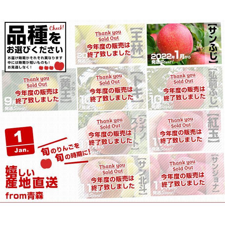 青森県より産地直送 JAつがる弘前 極旨・産直りんご 選べる品種 約3キロ(9玉から13玉) 林檎  送料無料|sanchokudayori|04