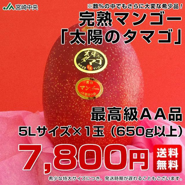 宮崎県より産地直送 JA宮崎中央 太陽のタマゴ 最高級AA品 5Lサイズ (650g以上×1玉) 送料無料 マンゴー たいようのたまご|sanchokudayori|02