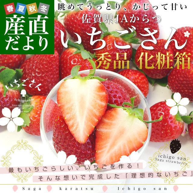 佐賀県より産地直送 JAからつ 新品種いちご いちごさん 秀品 3Lサイズ 500g化粧箱 20粒から24粒 イチゴサン イチゴさん いちごサン 唐津 うまかもん 送料無料|sanchokudayori