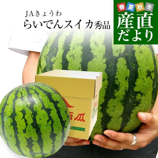 北海道より産地直送 JAきょうわ らいでんスイカ 超特大 秀品5Lサイズ 10キロ以上 すいか 西瓜 送料無料 sanchokudayori