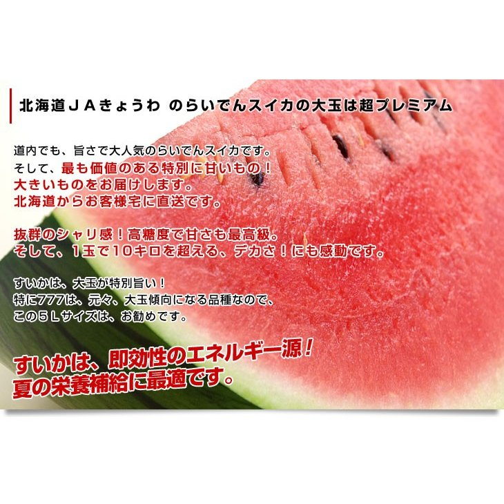 北海道より産地直送 JAきょうわ らいでんスイカ 超特大 秀品5Lサイズ 10キロ以上 すいか 西瓜 送料無料 sanchokudayori 03