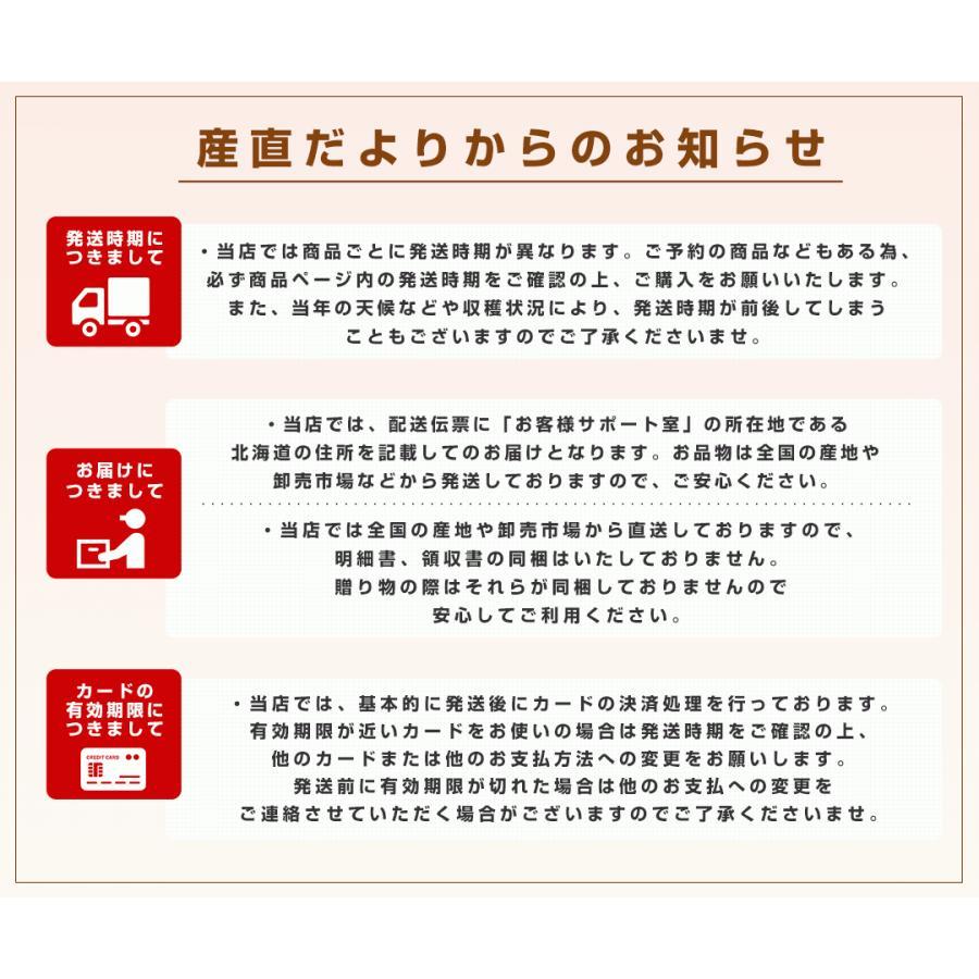 北海道より産地直送 JAきょうわ らいでんスイカ 超特大 秀品5Lサイズ 10キロ以上 すいか 西瓜 送料無料 sanchokudayori 07