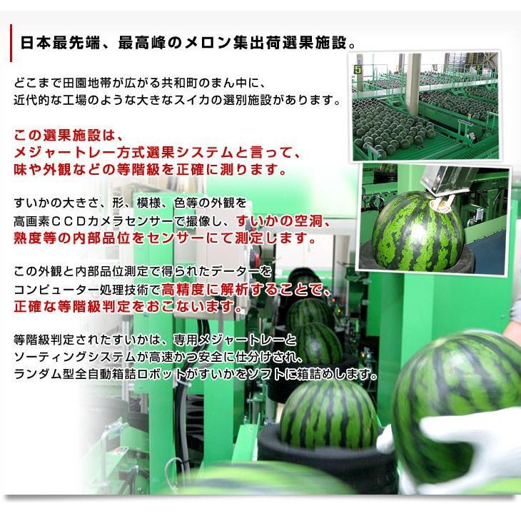 北海道より産地直送 JAきょうわ らいでんスイカ 超特大 秀品5Lサイズ 10キロ以上 すいか 西瓜 送料無料 sanchokudayori 05