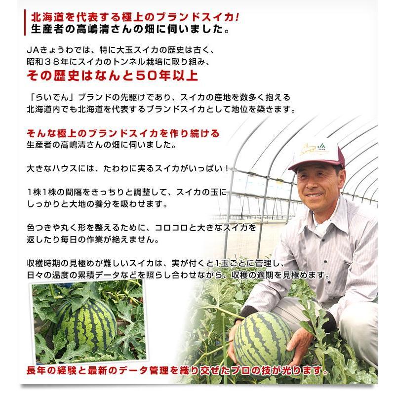 北海道より産地直送 JAきょうわ らいでんスイカ 超特大 秀品5Lサイズ 10キロ以上 すいか 西瓜 送料無料 sanchokudayori 06