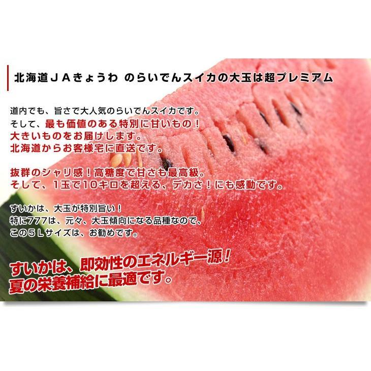 北海道より産地直送 JAきょうわ らいでんスイカ 超特大 優品5Lサイズ 10キロ以上 すいか 西瓜 送料無料 sanchokudayori 04