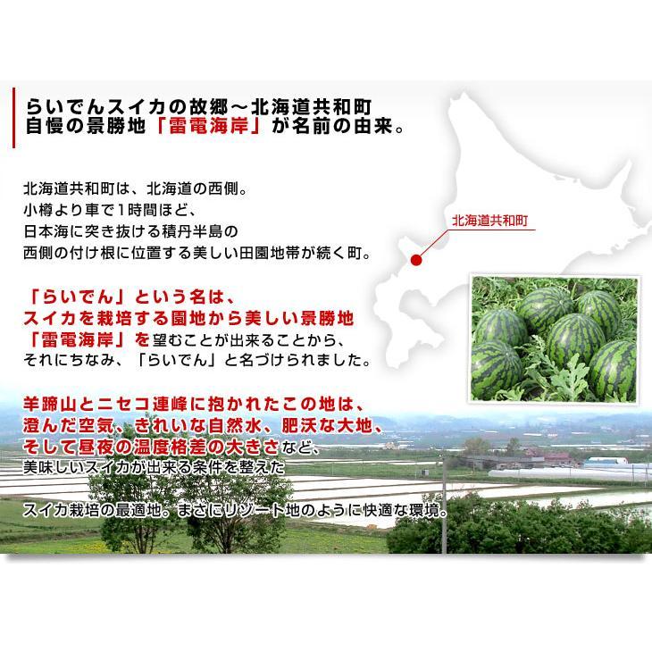 北海道から産地発送 JAきょうわ らいでんスイカ 秀品 2Lサイズ (6キロ×2玉入り)すいか 西瓜 送料無料|sanchokudayori|04