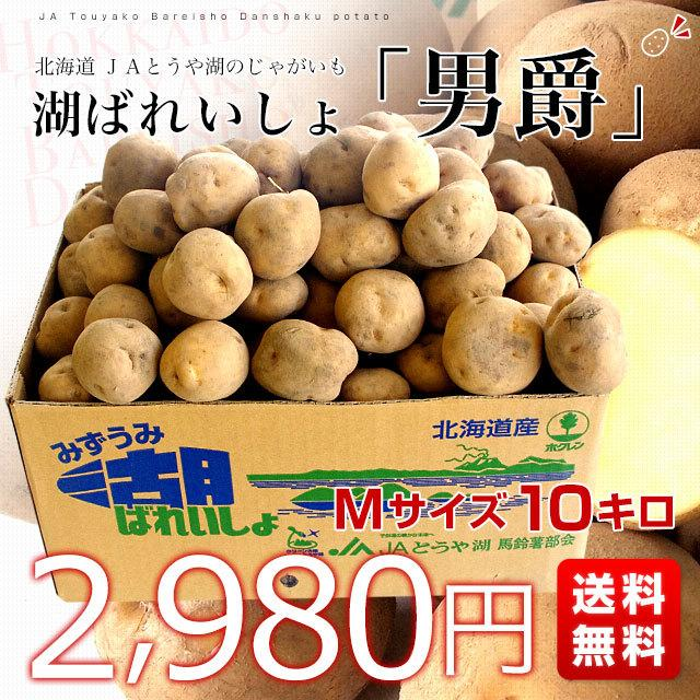 北海道より産地直送 JAとうや湖 じゃがいも 湖ばれいしょ「男爵」 Mサイズ 10キロ 馬鈴薯 ジャガイモ 送料無料|sanchokudayori|02