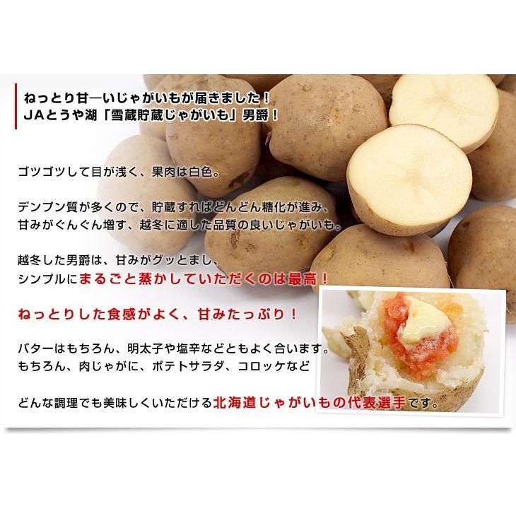 北海道より産地直送 JAとうや湖 雪蔵貯蔵じゃがいも (男爵) Lサイズ 10キロ  送料無料 芋 ジャガイモ 馬鈴薯|sanchokudayori|04