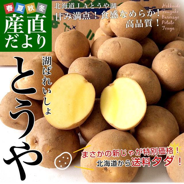 北海道から産地直送 JAとうや湖 じゃがいも 湖ばれいしょ「とうや」 Mサイズ 10キロ 馬鈴薯 ジャガイモ 送料無料|sanchokudayori