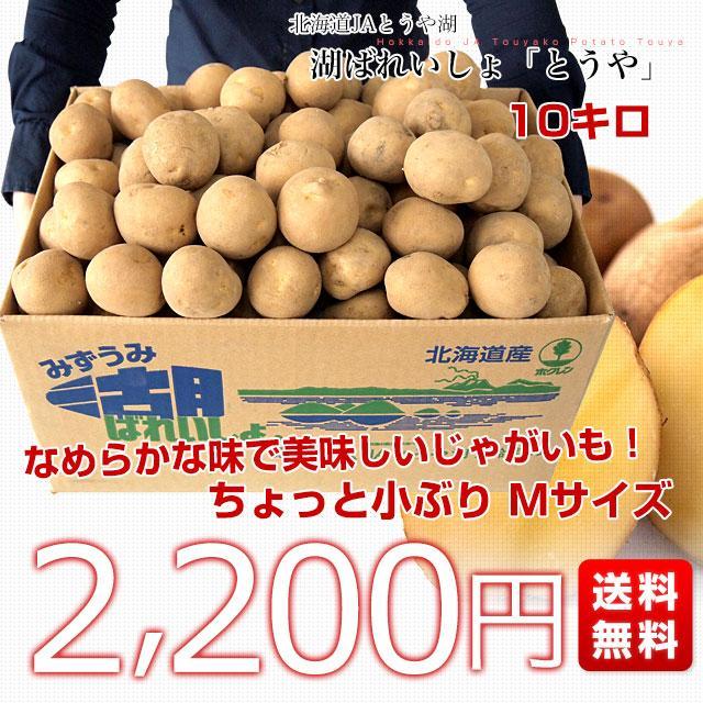 北海道から産地直送 JAとうや湖 じゃがいも 湖ばれいしょ「とうや」 Mサイズ 10キロ 馬鈴薯 ジャガイモ 送料無料|sanchokudayori|02