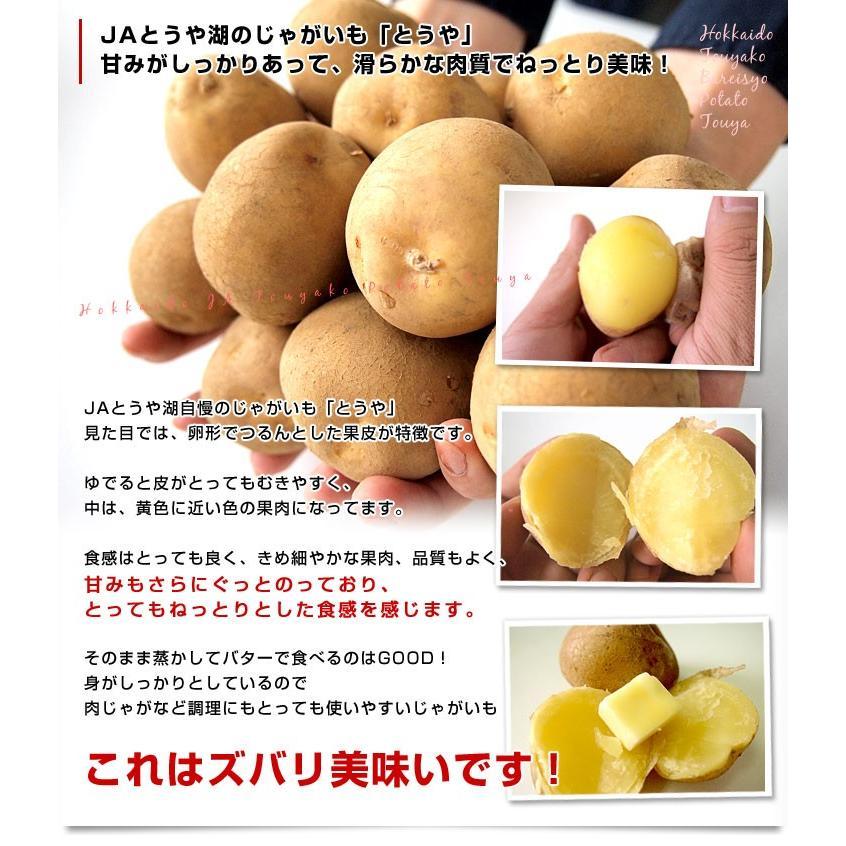 北海道から産地直送 JAとうや湖 じゃがいも 湖ばれいしょ「とうや」 Mサイズ 10キロ 馬鈴薯 ジャガイモ 送料無料|sanchokudayori|03