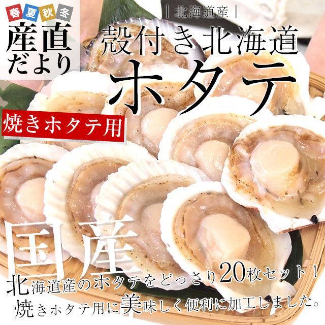 北海道より直送 北海道産殻付きホタテ 焼きホタテ用20枚セット 合計1.2キロ (ホタテ10枚入り×2袋)  送料無料 帆立 ほたて|sanchokudayori