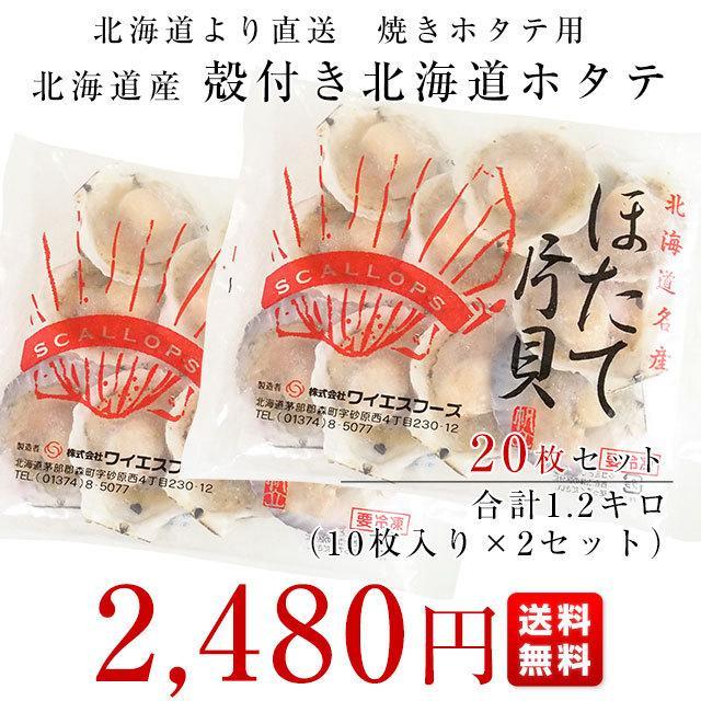 北海道より直送 北海道産殻付きホタテ 焼きホタテ用20枚セット 合計1.2キロ (ホタテ10枚入り×2袋)  送料無料 帆立 ほたて|sanchokudayori|02