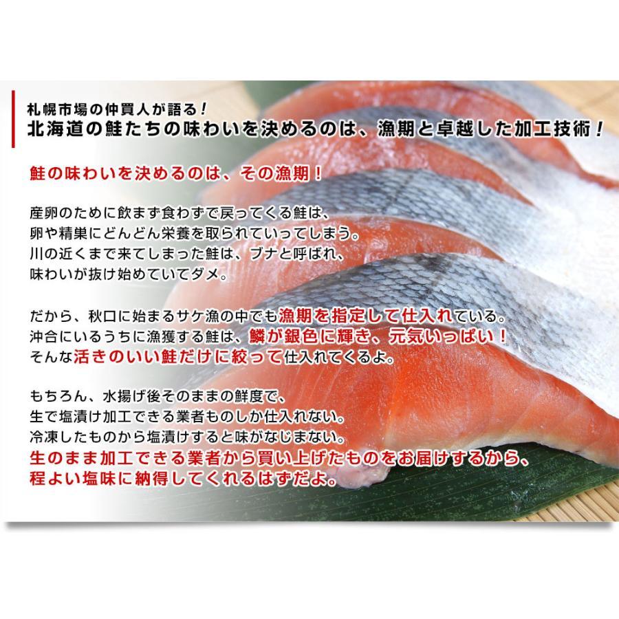 北海道産 姿切り身 大型の鮭 まるごと1尾分 3キロ 北海道サケ シャケ 秋鮭|sanchokudayori|06