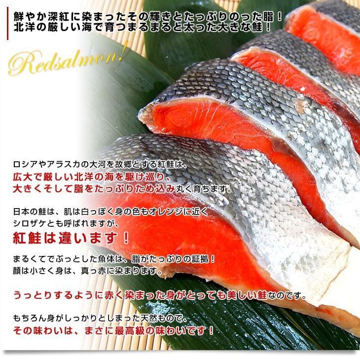 北海道加工 天然紅鮭 <中辛> 半身 姿切り身 約800g 送料無料 ロシア産|sanchokudayori|03
