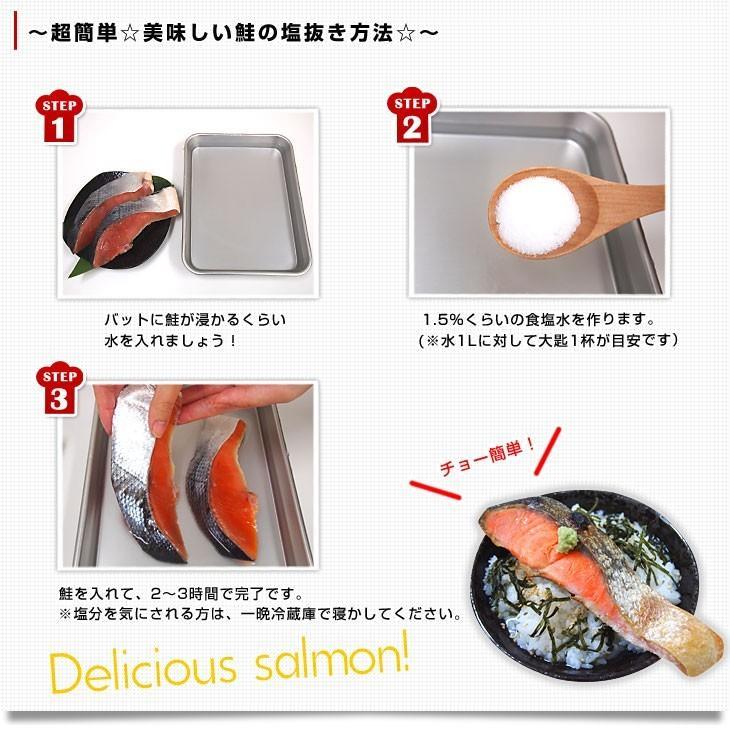 北海道加工 天然紅鮭 <中辛> 半身 姿切り身 約800g 送料無料 ロシア産|sanchokudayori|05