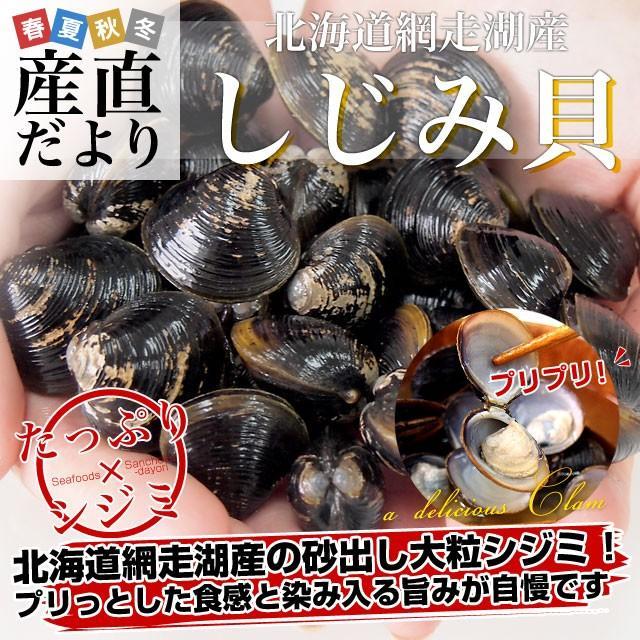 北海道から発送 北海道網走湖産 しじみ貝 5パックセット (約150g×5P)|sanchokudayori