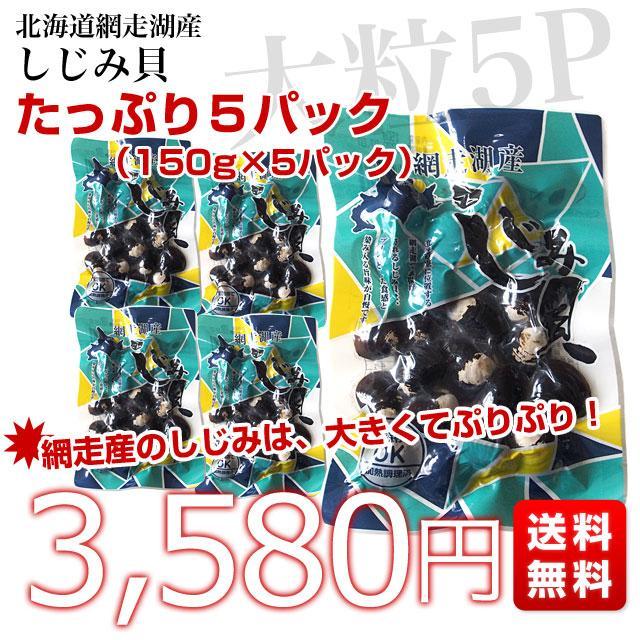 北海道から発送 北海道網走湖産 しじみ貝 5パックセット (約150g×5P)|sanchokudayori|02