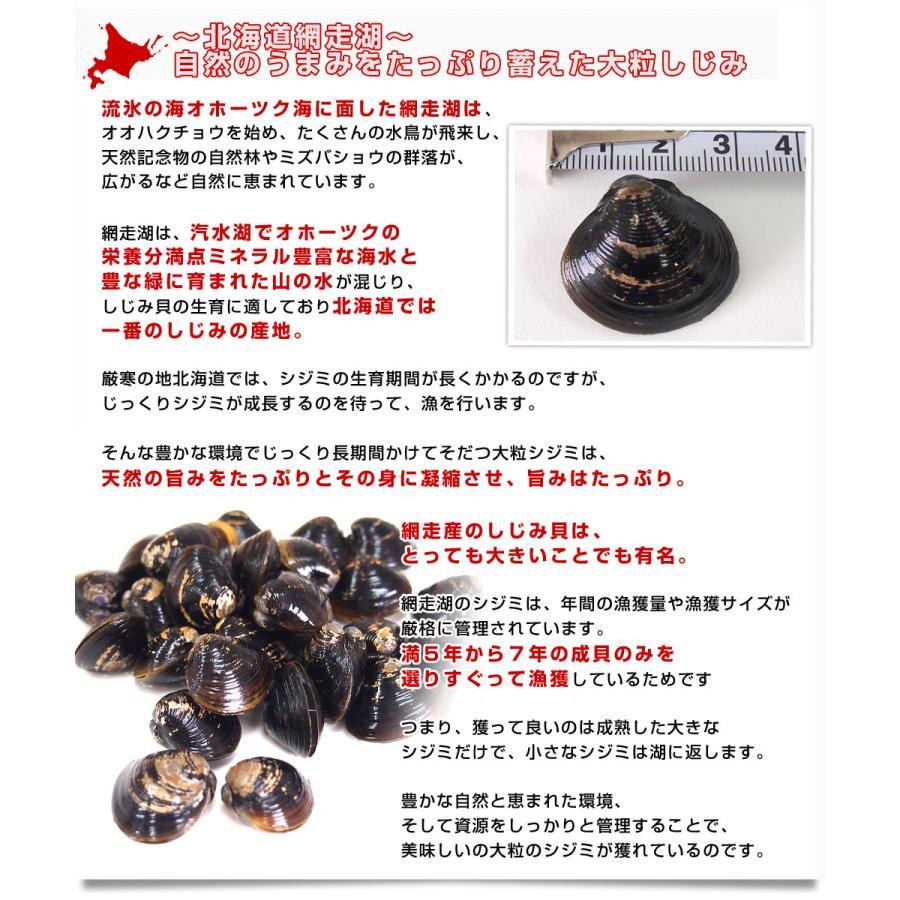 北海道から発送 北海道網走湖産 しじみ貝 5パックセット (約150g×5P)|sanchokudayori|04