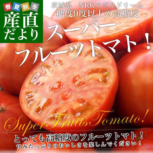 茨城県より産地直送 NKKアグリドリーム スーパーフルーツトマト 9度+ A品 約1キロ(8玉から16玉)  送料無料 高糖度トマト NKKトマト|sanchokudayori