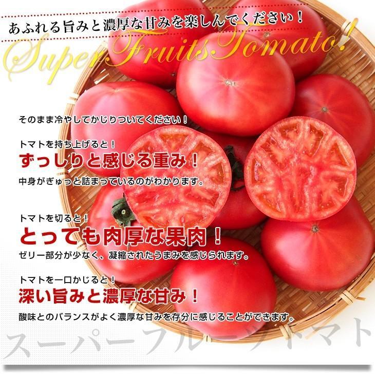 茨城県より産地直送 NKKアグリドリーム スーパーフルーツトマト 9度+ A品 約3キロ(20玉から35玉)  送料無料 高糖度トマト NKKトマト|sanchokudayori|04