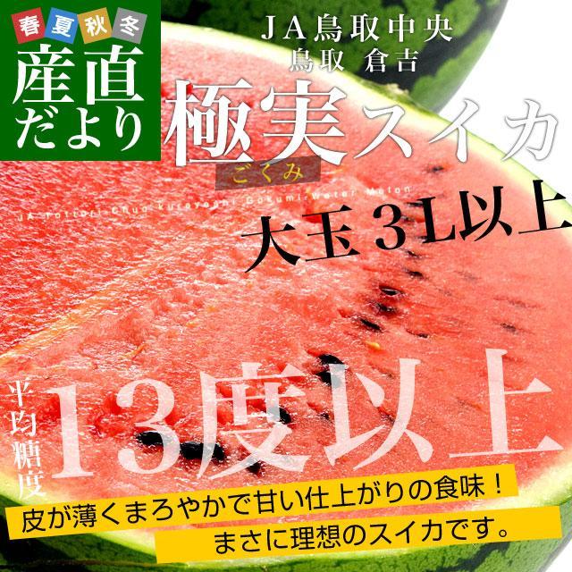 鳥取県より産地直送 JA鳥取中央 倉吉スイカ 極実(ごくみ) 秀品 3L以上の大玉 8キロ以上 送料無料 西瓜 すいか|sanchokudayori