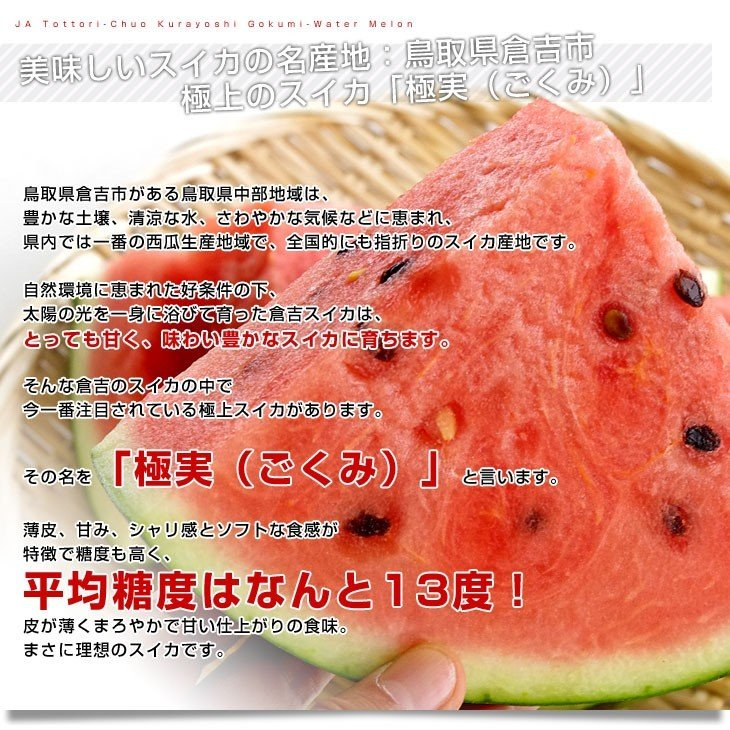 鳥取県より産地直送 JA鳥取中央 倉吉スイカ 極実(ごくみ) 秀品 3L以上の大玉 8キロ以上 送料無料 西瓜 すいか|sanchokudayori|03