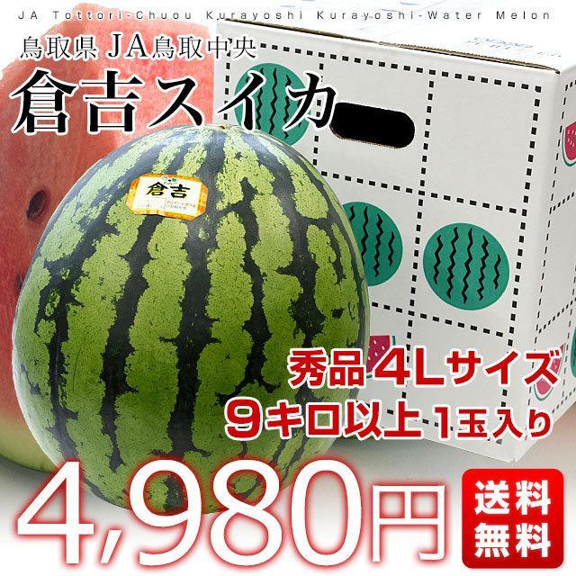鳥取県から産地発送 JA鳥取中央 倉吉スイカ 秀品 大玉 3Lから4L  8キロ以上1玉 すいか 西瓜 送料無料|sanchokudayori|02