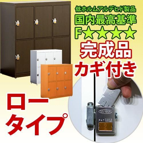 業務用 鍵付き下駄箱 ロータイプ カギ付き シューズボックス シューズボックス 日本製 完成品 L800-6D